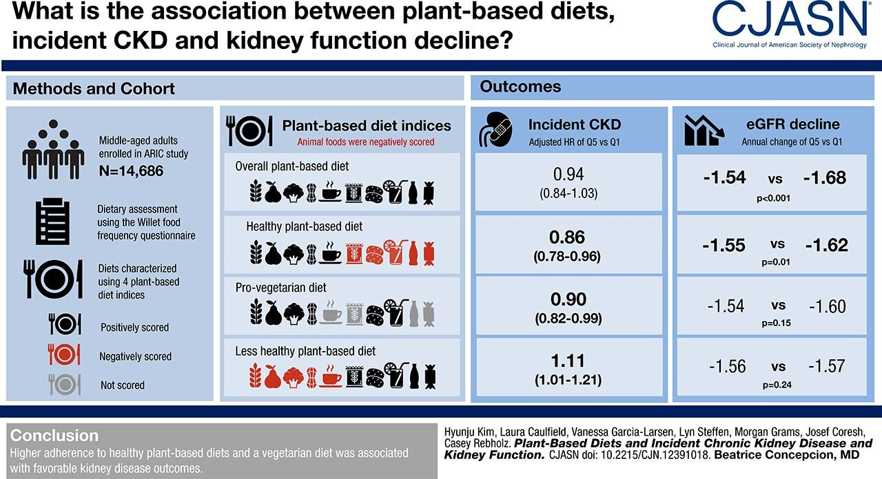 This study has shown that the type of plant-based diet can make a difference in keeping kidney function.